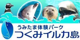 つくみイルカ島様 イルカ捕獲用保護ネットを制作致しました。